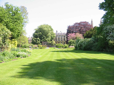 The garden of Clare College